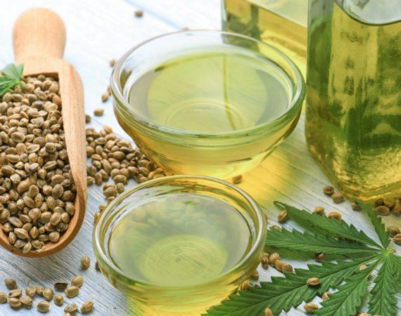 Canapa: una fonte alternativa di proteine per sbizzarrirsi in cucina
